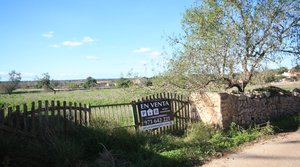 Rustic plot, very close to the town of Santanyí, Mallorca